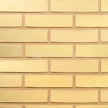 Кирпич облицовочный керамический Terca (Wienerberger) SAFARI гладкий 250х85х65